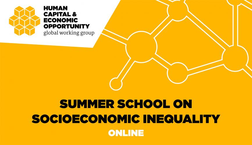 Yellow graphic image that serves as the cover page for HCEO's virtual, streaming Summer School on Socioeonomic Inequality. The image features the name of the school and an attracted vector detail.