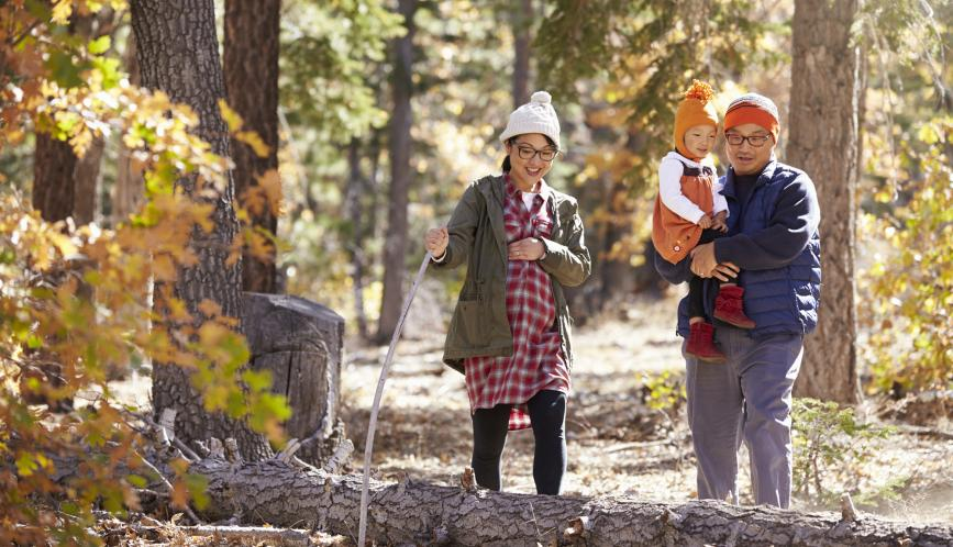A stock image of a man, pregnant woman, and child hiking in the woods.